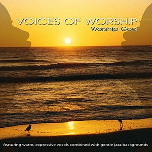 Image pour 'Voices Of Worship - Favorite Praise & Worship Songs'