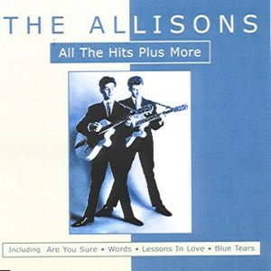 Image for 'All The Hits Plus More'