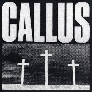 Image for 'Callus'