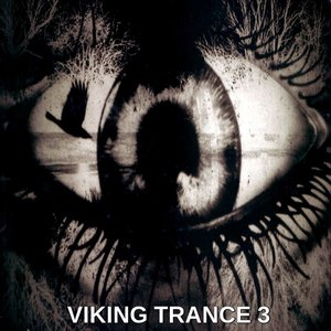 Image for 'Viking Trance 3'
