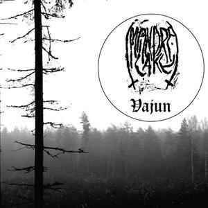 Image for 'Vajun'