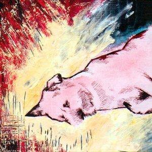 Imagen de 'Drawn the light'