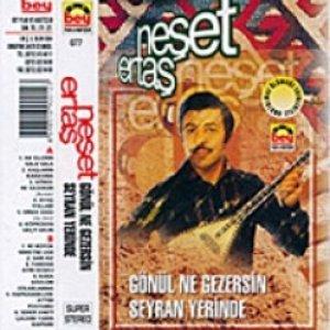 Image for 'Gönül Ne Gezersin Seyran Yerinde'