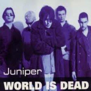 Bild für 'World Is Dead'