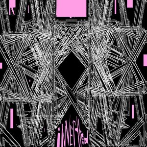 Bild för 'Inverted - 2008 promo'