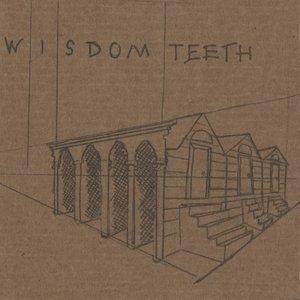 Image for 'Wisdom Teeth'
