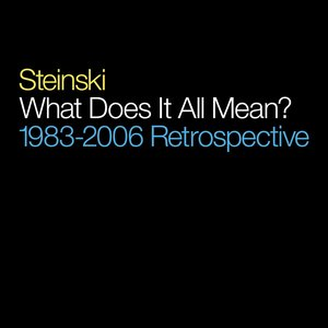 Imagen de 'What Does It All Mean?: 1983-2006 Retrospective'
