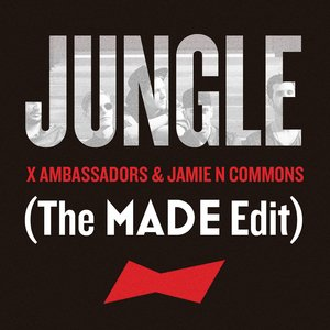 Image for 'Jungle'