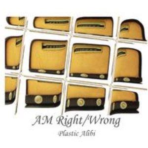 Immagine per 'Plastic Alibi'