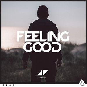 Image pour 'Feeling Good'