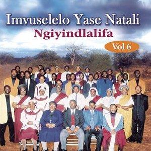 Image for 'Ngiyindlalifa - Vol. 6'