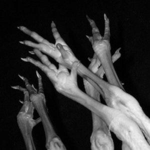 Image for 'Fantom Hands'