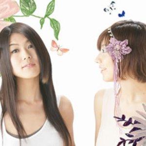 Bild för 'タマトミカ'