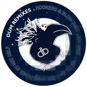 Image for 'Dum Remixes'