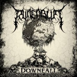 Image pour 'Downfall'