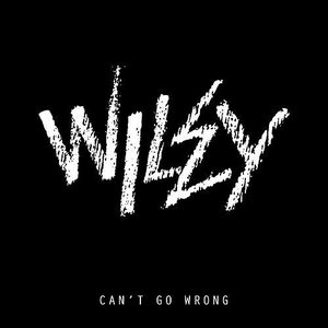 Image for 'Can't Go Wrong'