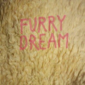 Image for 'Furry Dream'
