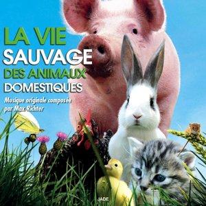 Image for 'La vie sauvage des animaux domestiques (Bande originale du film)'