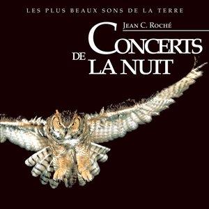 Image for 'Concert d'insectes nocturnes en Provence'
