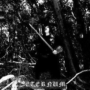 Image for 'Eternum'