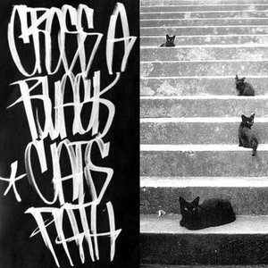 Image for 'Cross a Black Cat's Path'