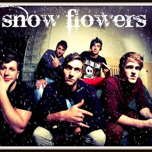 Image for 'Snow Flowers'