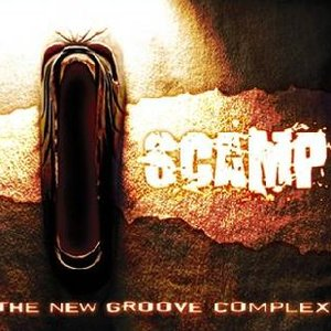 Image for 'The New Groove Complex'