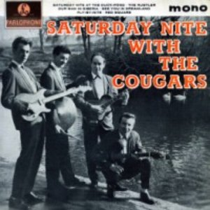 Image for 'The Cougars'