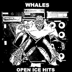 Image for 'Open Ice Hits'