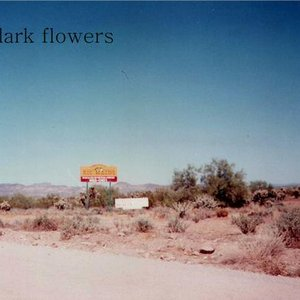 Image for 'The Dark Flowers'