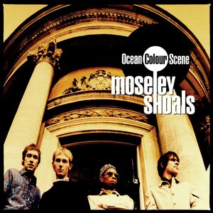 Immagine per 'Moseley Shoals'