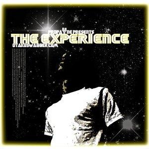 Bild för 'The Experience'