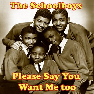 Image for 'Please Say You Want Me too'