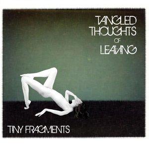 Bild für 'Tiny Fragments'