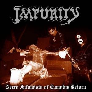 Image for 'Necro Infamists of Tumulus Return'