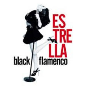 Image for 'Black Flamenco'