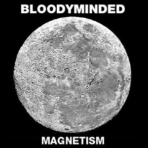 Image for 'Magnetism'