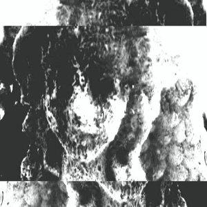 Image for 'Admirer'