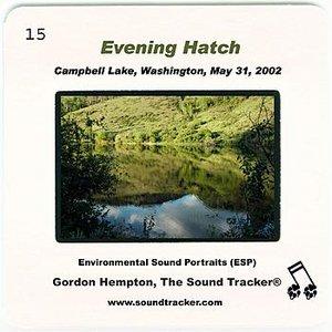 Imagem de 'Evening Hatch (Campbell Lake, Washington, May 31, 2002)'