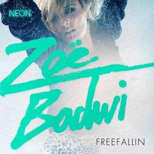 Image for 'Freefallin''