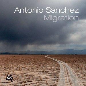 Image for 'Migration'