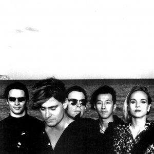 Immagine per 'Phillip Boa & The VoodooClub'