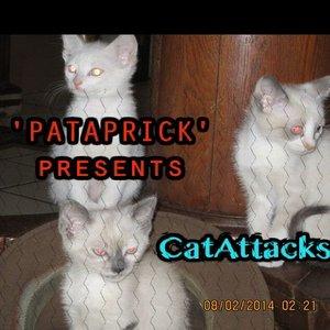 Bild für 'CatAttack'
