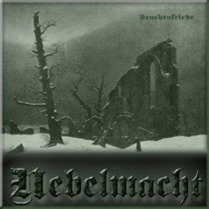 Image for 'Seuchenfriede'