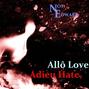 Image for 'Adieu Hate, Allô Love'