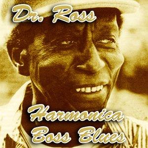 Immagine per 'Harmonica Boss Blues'
