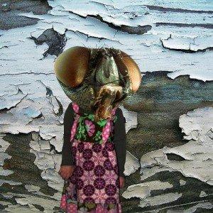 Immagine per 'Fragment'
