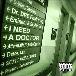 Image for 'I Need a Doctor (feat. Eminem & Skylar Grey) - Single'