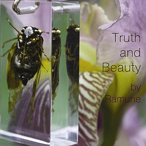 Image for 'Truth and Beauty'
