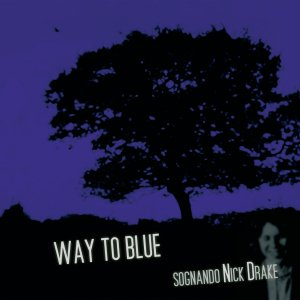 Image for 'Way To Blue - Sognando Nick Drake '